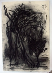 C3-charcoal-on-paper-2005.