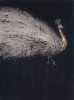 4-peacock 130x97 cm Mixed Media on Canvas 2018