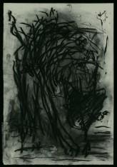 WALID EL MASRI_Cat_charcoal on paper 54x38 cm 2005