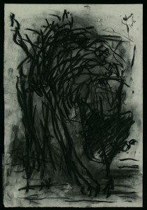 WALID EL MASRI_Cat_charcoal on paper 54x38 cm 2005