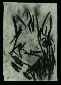 WALID EL MASRI_Cat_charcoal on paper 28x18 cm 2005